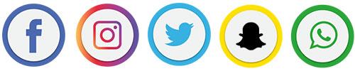 Reveal Social Media Profiles Icons